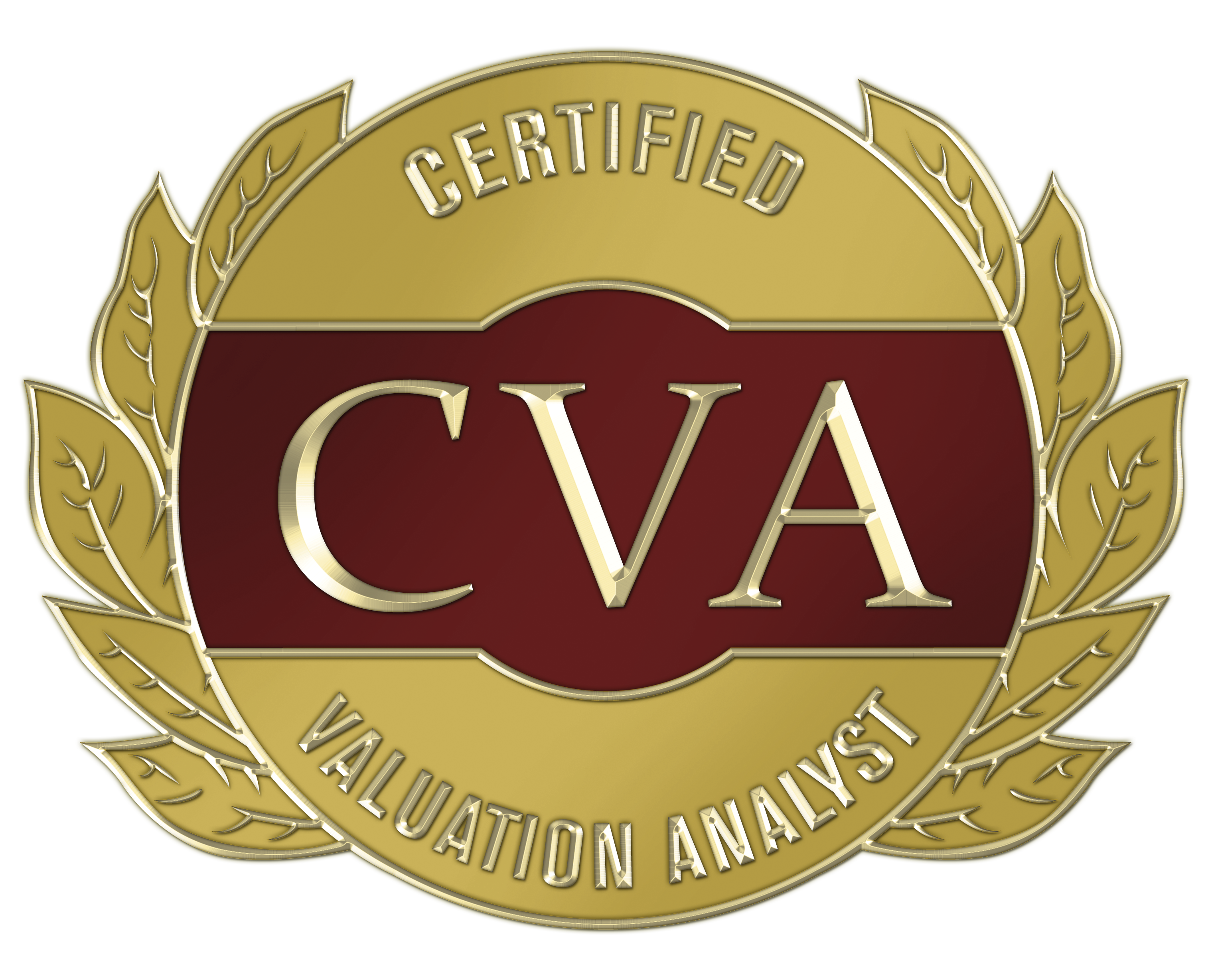 CVA, NACVA Certified Valuation Analyst