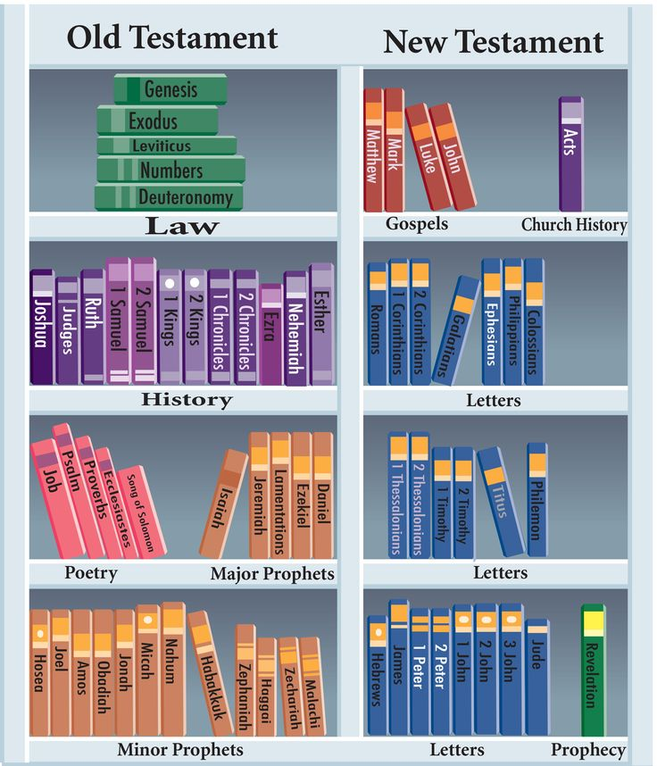 Bible bookcase
